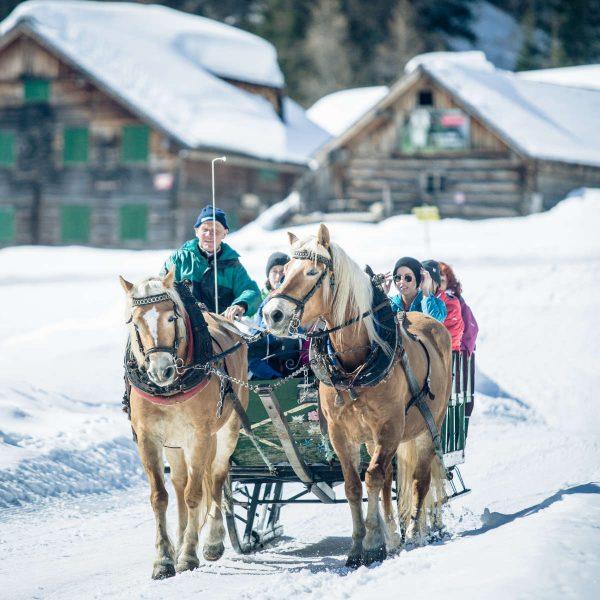 Pferdeschlittenfahrt am Obertauern